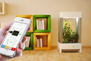 plug and play hydroponic system