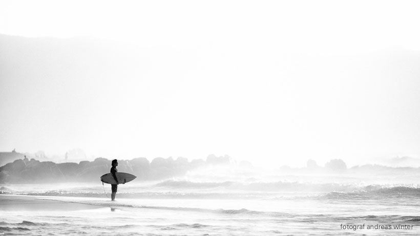 The Surfer and The Sea by Andreas Winter