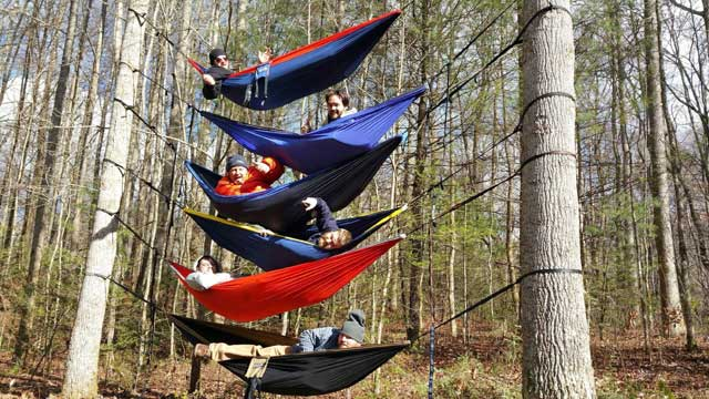 14 Reasons Why Hammocking Rocks Critical Cactus